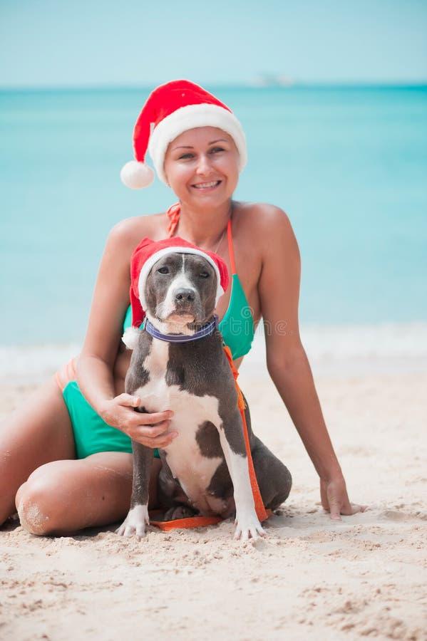 De jonge gelukkige vrouw in de zitting van de Kerstmishoed bij het strand met haar vriend amstaff achtervolgt stock afbeeldingen