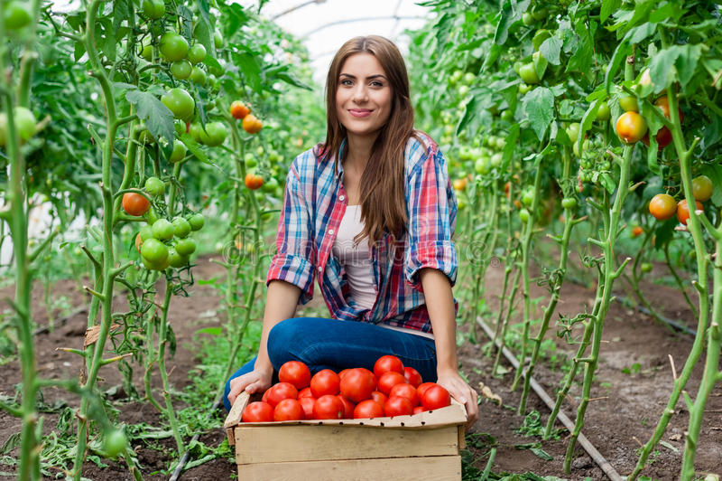 De jonge glimlachende arbeider van landbouwvrouwen stock afbeelding