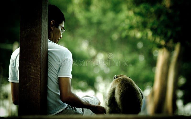 De jonge mens biedt wat voedsel aan een wilde aap in Tanjong-Park, Maleisië aan stock foto