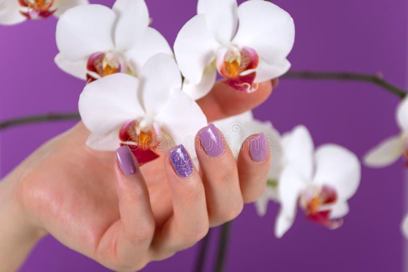 De jonge mooie vrouwelijke hand met een lilac kleurenspijkers poetst gel en de mooie decoratie van de orchideebloem op purpere ac stock foto's