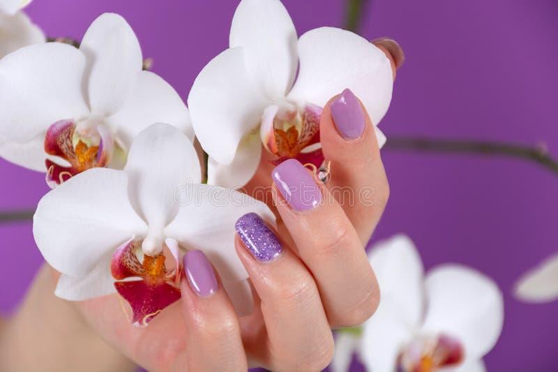De jonge mooie vrouwelijke hand met een lilac kleurenspijkers poetst gel en de mooie decoratie van de orchideebloem op purpere ac royalty-vrije stock afbeeldingen