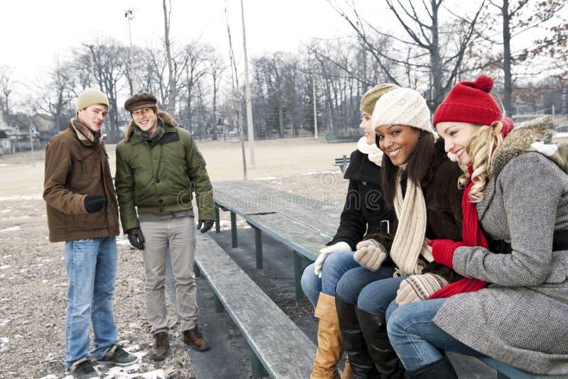 De jonge vrienden in de winter parkeren stock afbeelding
