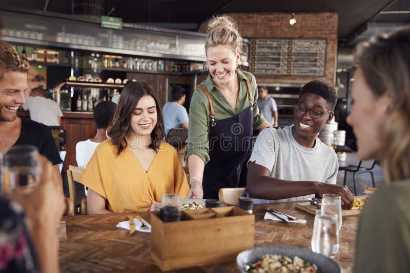 De Jonge Vrienden die van serveersterserving group of voor Dranken en Voedsel in Restaurant samenkomen stock fotografie