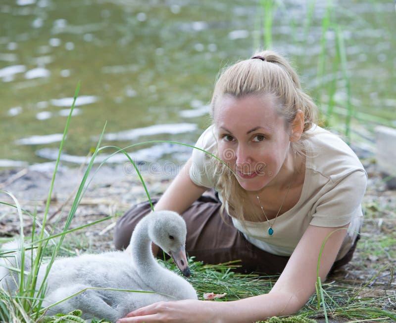 De jonge vrouw dichtbij een babyvogel van een zwaan op de bank van het meer royalty-vrije stock afbeeldingen