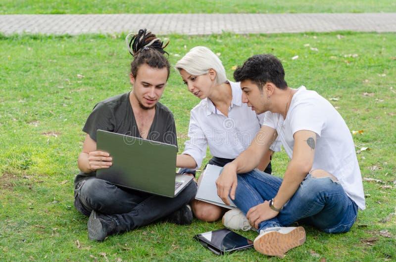 De jonge vrouw en twee jonge mannen werken in het park met laptop stock foto