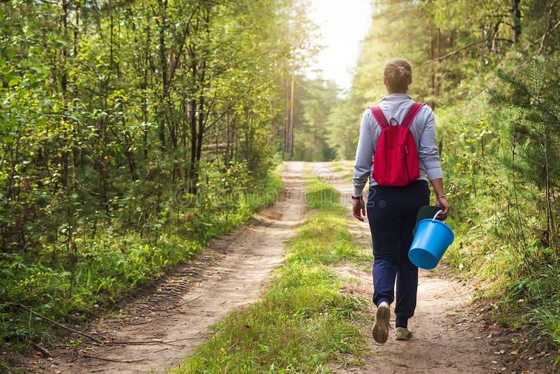 De jonge vrouw loopt langs bosweg met mand in haar hand Het meisje in bos gaat paddestoelen en bessen verzamelen stock afbeelding