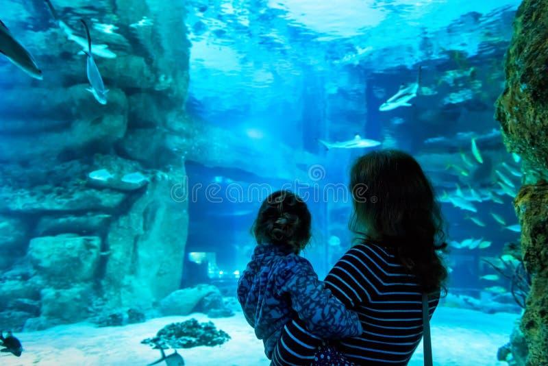 De jonge vrouw met kind let op een vis in aquarium stock fotografie