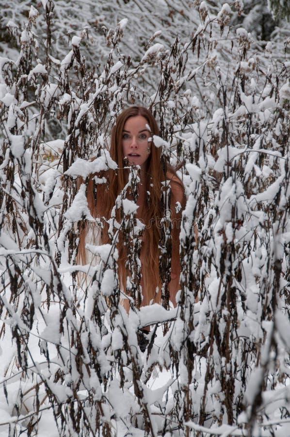 De jonge vrouw met lang die haar in de winter, vorst, koude, wellness na sauna maakt ijs in de sneeuw door snow-covered struiken  royalty-vrije stock foto