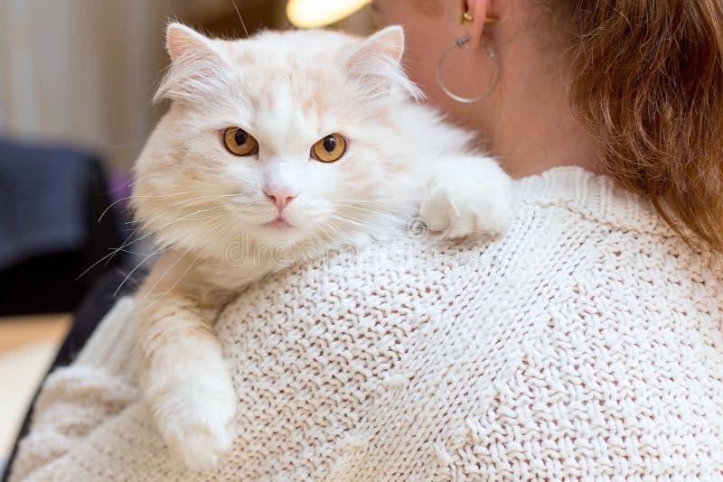 De jonge vrouw speelt met haar kat stock foto