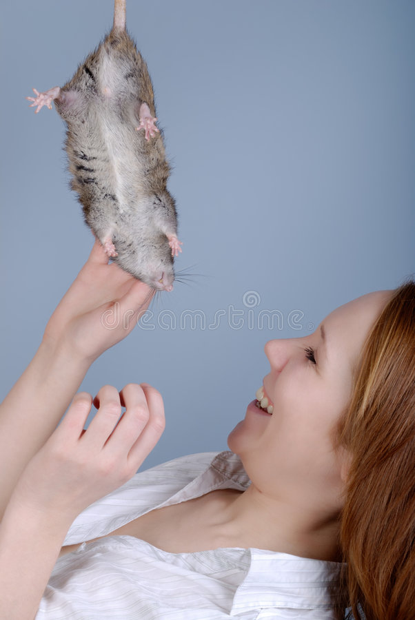 De jonge vrouw strijkt een rat royalty-vrije stock afbeeldingen