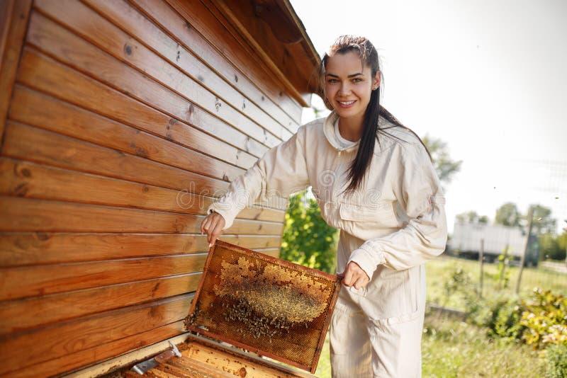 De jonge vrouwelijke imker trekt van de bijenkorf een houten kader met honingraat terug Verzamel honing Imkerijconcept stock fotografie