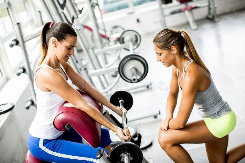 De jonge vrouwen hebben gewichtheffen in de gymnastiek stock afbeeldingen