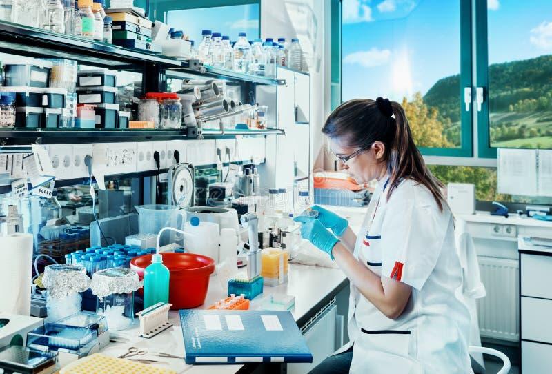 De jonge wetenschapperwerken in modern laboratorium royalty-vrije stock foto's