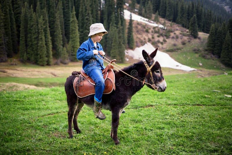 De jongen berijdt een ezel stock afbeeldingen