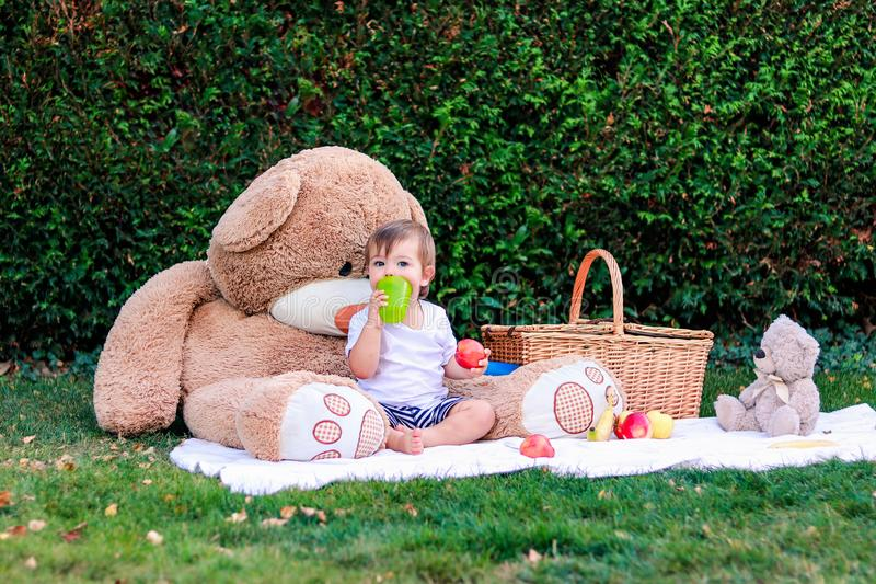 De jongen die van de Ittlebaby picknick met teddy speelgoed in tuin hebben Gelukkige kindzitting op deken met mand royalty-vrije stock fotografie