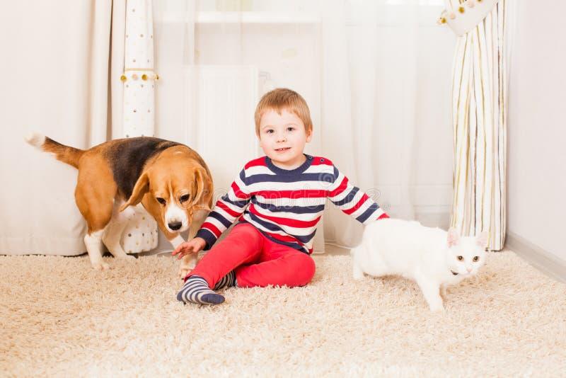 De jongen en de mooie huisdieren royalty-vrije stock afbeelding