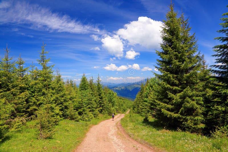 De jongen met toeristenrugzakken gaat op een brede weg dichtbij het bos op een zonnige de zomerdag royalty-vrije stock afbeeldingen