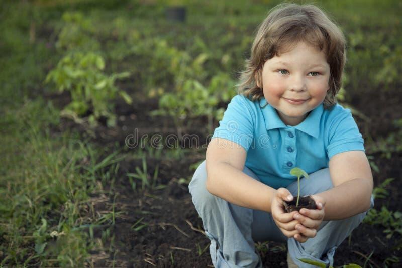 De jongen in de tuin bewondert de installatie alvorens te planten Groene Sprou royalty-vrije stock foto's