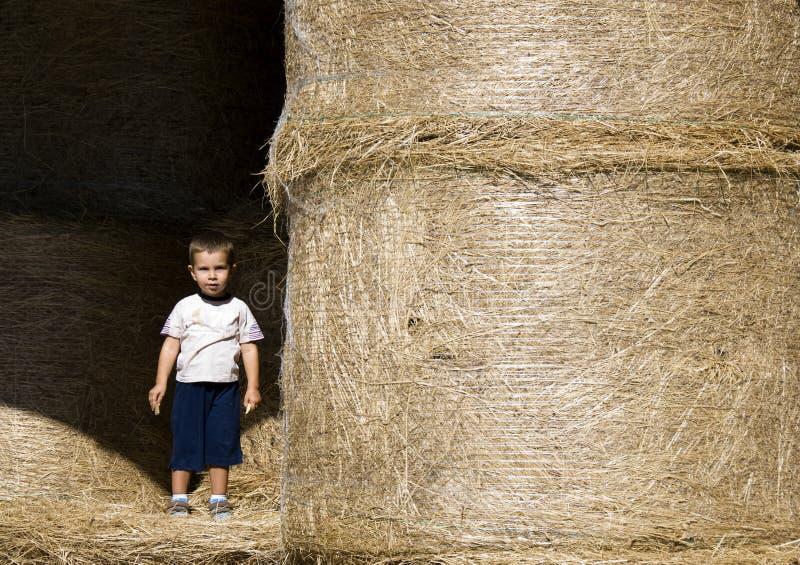 De jongen van de baby in een landbouwbedrijf royalty-vrije stock fotografie