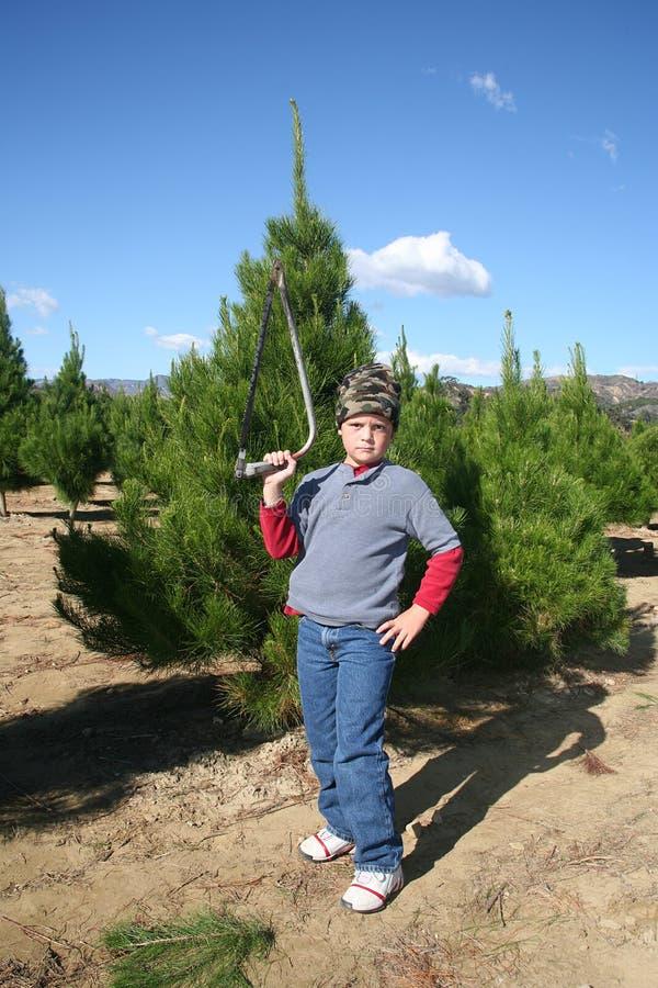 De jongen van de kerstboom royalty-vrije stock afbeeldingen