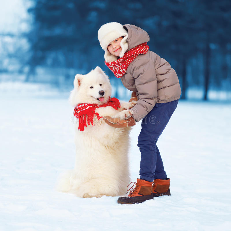 De jongen van de Kerstmis het gelukkige tiener geeft spelen met witte Samoyed-hond in de winter, hond pootkind op sneeuw stock afbeelding
