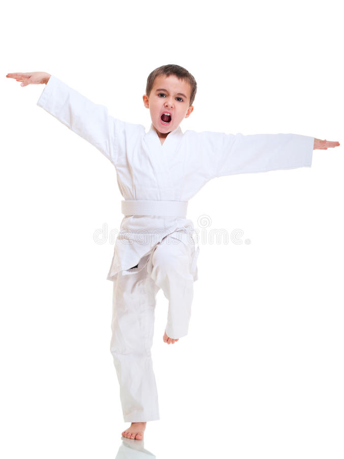 De jongen van de kungfu het vechten positie stock afbeeldingen
