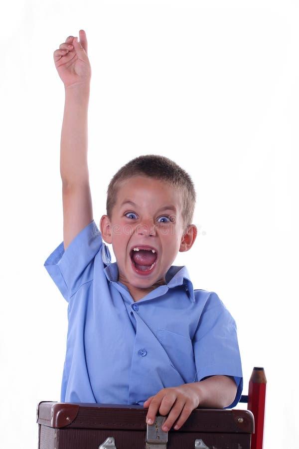 De jongen van de lage school royalty-vrije stock foto