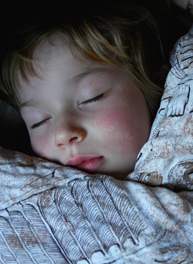 De jongen van de slaap stock afbeelding