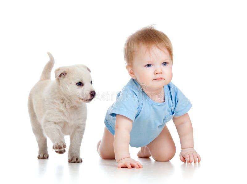 De jongen van het kind en en hondpuppy dat speelt kruipt royalty-vrije stock foto