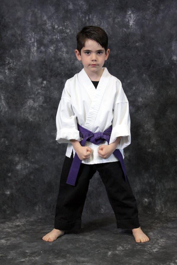 De jongen van vechtsporten royalty-vrije stock afbeelding