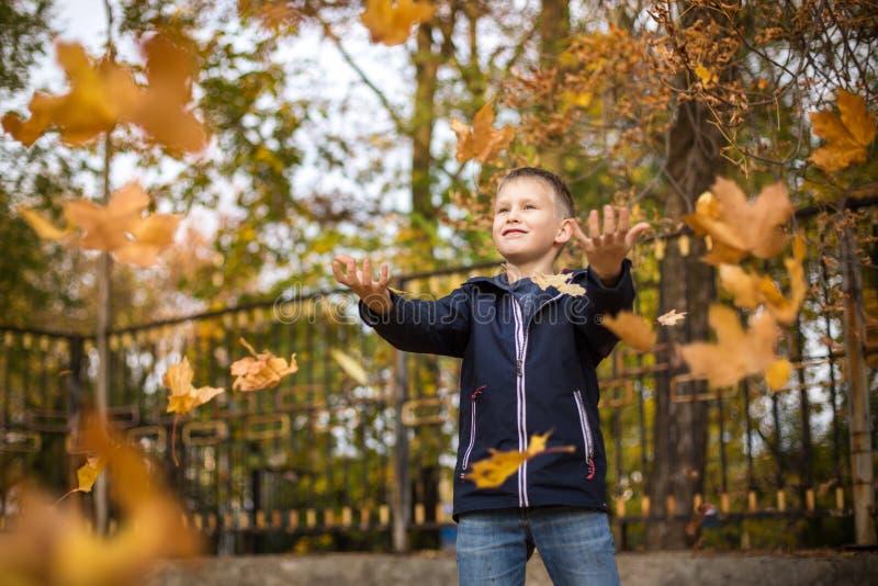 De jongen werpt de herfstbladeren Blij kind Park, de herfstdag royalty-vrije stock foto