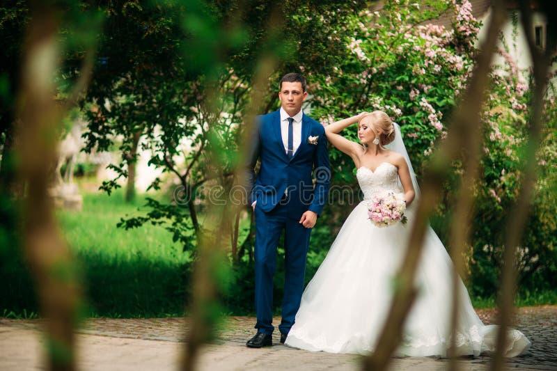 De jonggehuwden lopen in het park op de huwelijksdag De bruid en de bruidegom Enjoying bij de huwelijksdag zonnig weer stock afbeeldingen