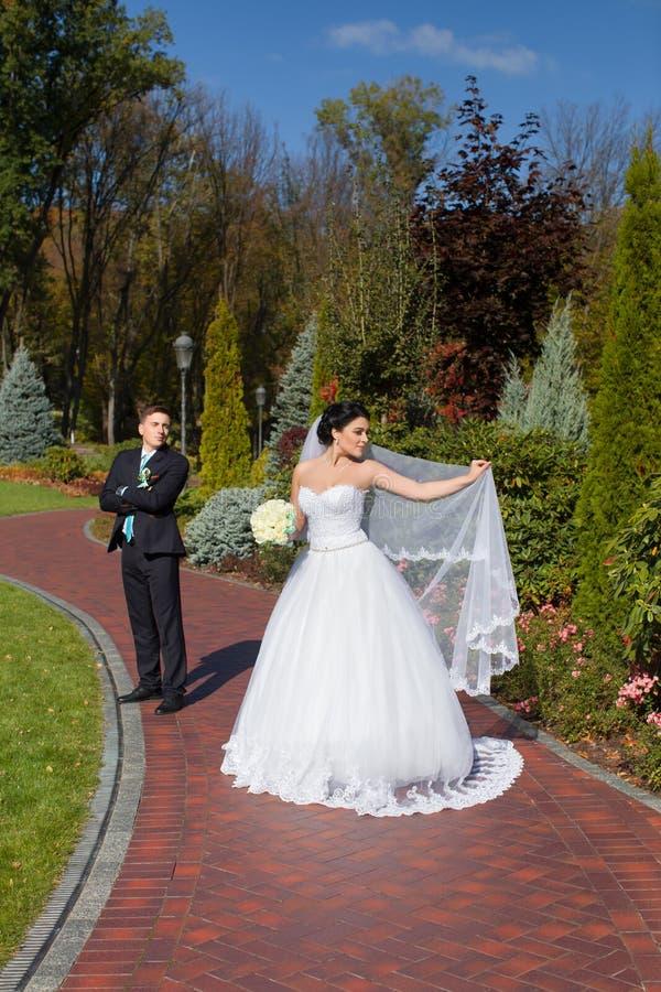 De jonggehuwden stellen in de foto in het de zomerpark stock foto