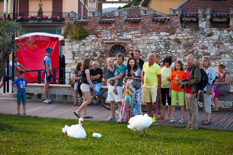 7 de julio de 2013 Italia La ciudad de Salo en las orillas de Lake Lago di Garda en el verano, la región de Lombardía imagen de archivo libre de regalías