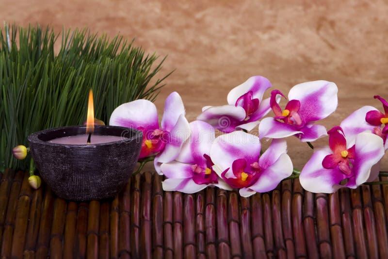 De kaars en de orchideebloemen van het kuuroord stock afbeeldingen