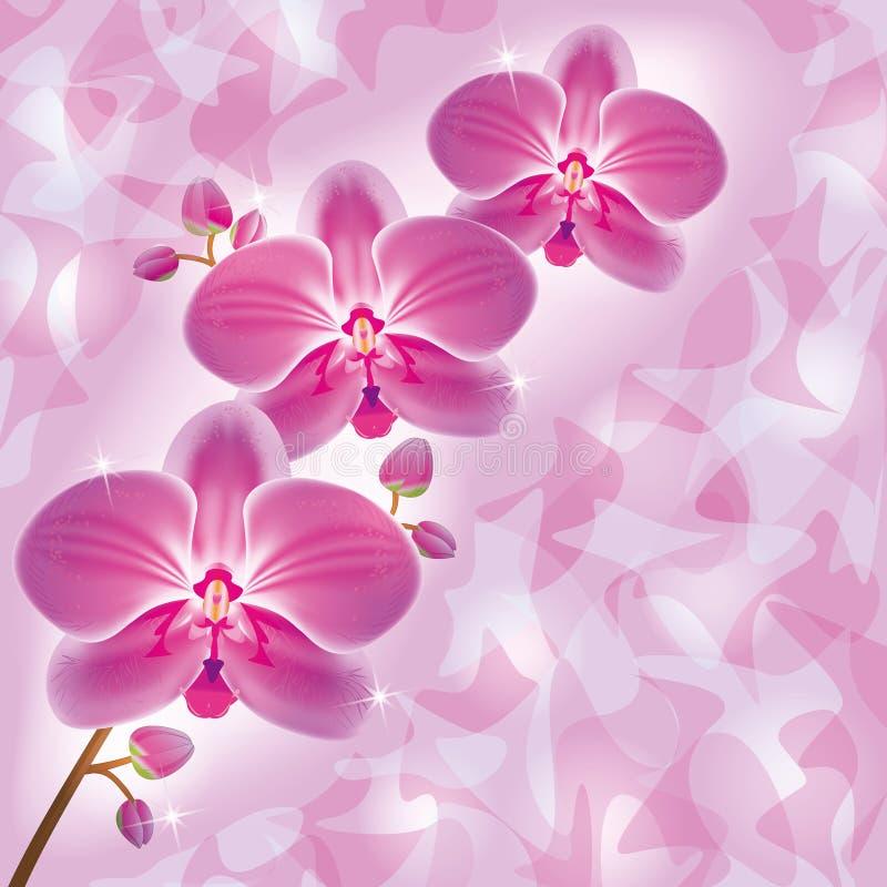 De kaart van de groet met orchidee in grungestijl vector illustratie