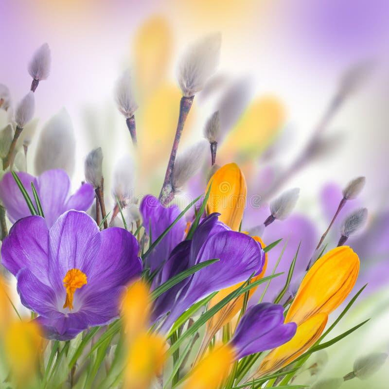 De Kaart van de lentepasen stock afbeeldingen