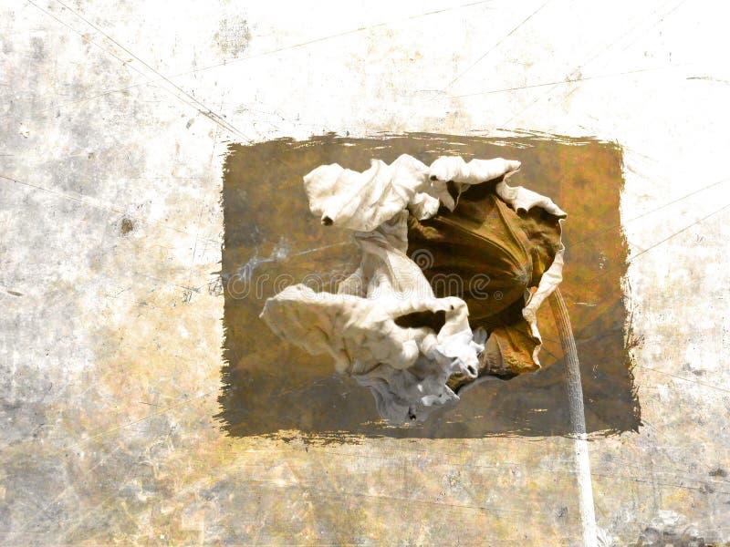 De Kaart van Grunge met stilleven royalty-vrije illustratie