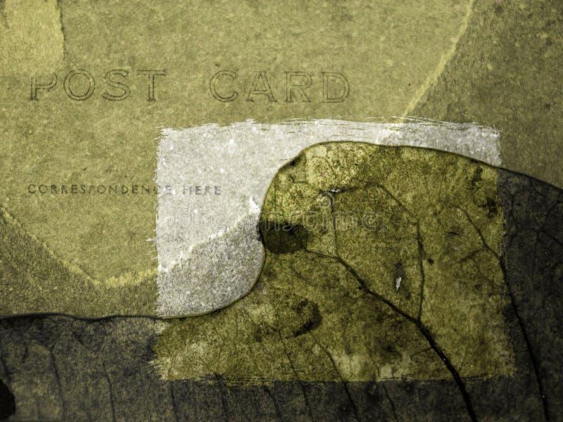 De Kaart van Xmass - groen blad vector illustratie