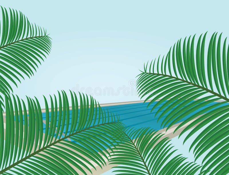 De kaart van de zomer De palm doorbladert voor zwembad royalty-vrije illustratie