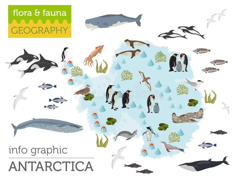 De kaart van de zuidpool, van Antarctica, van de flora en van de fauna, vlakke elementen Anim vector illustratie