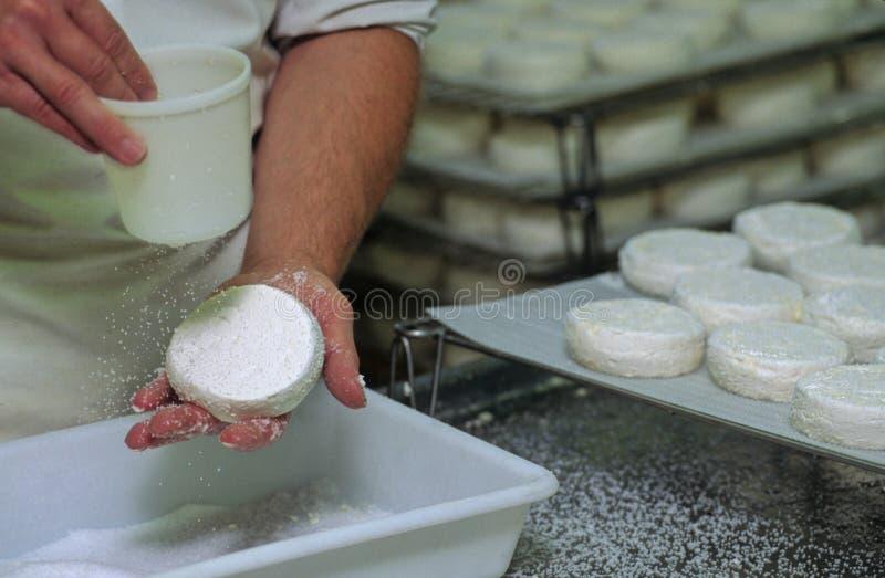 De kaas van de geit royalty-vrije stock foto