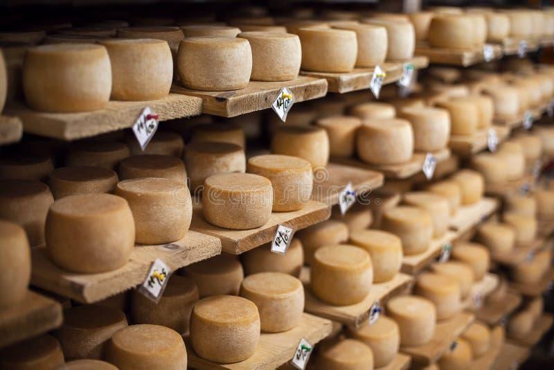 De kaas van de melk op planken stock fotografie