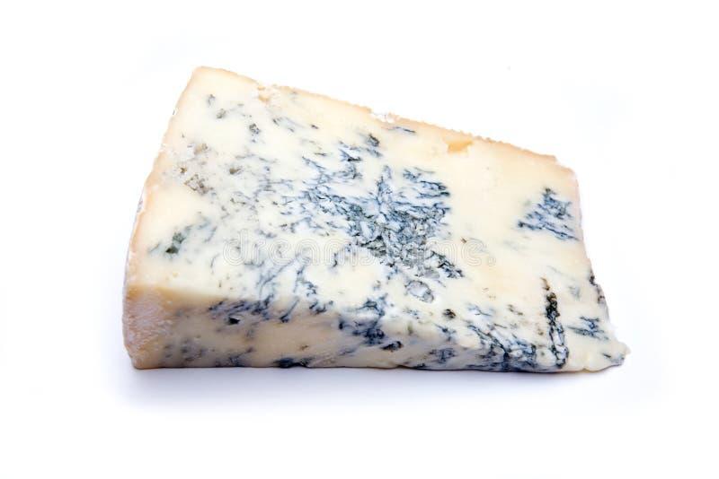 De kaas van gorgonzola. stock afbeeldingen