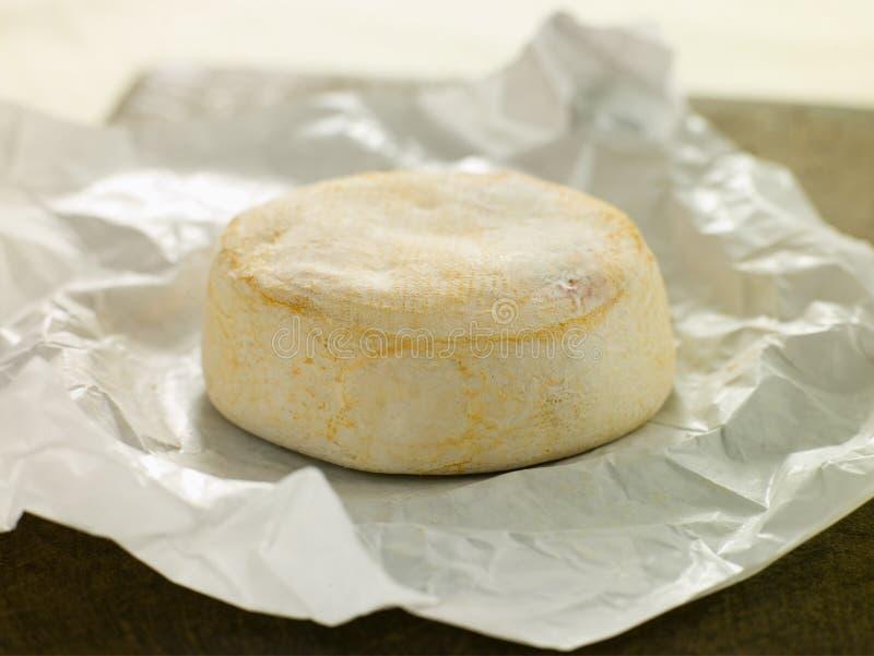De Kaas van Reblochon stock afbeelding