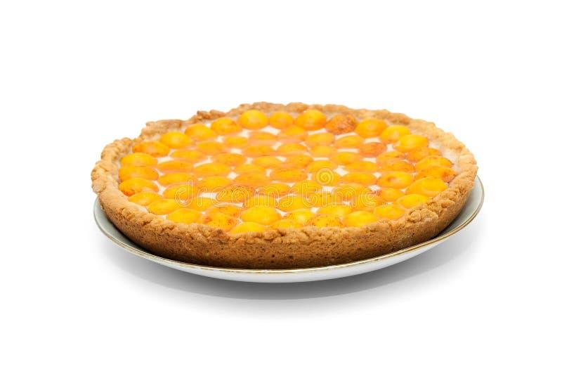 De kaastaart van abrikozen met gelei stock foto