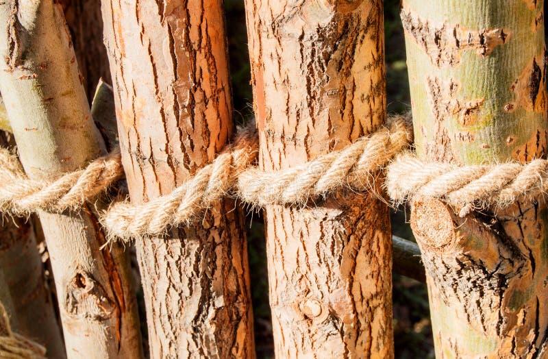 De kabel wordt geknoopt rond houten posten, omheiningsposten Close-up natuurlijke textuur van de boomschors stock afbeeldingen