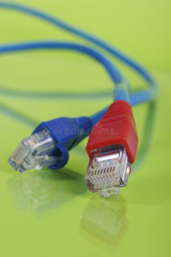 De kabelrood en blauw van het voorzien van een netwerk stock foto