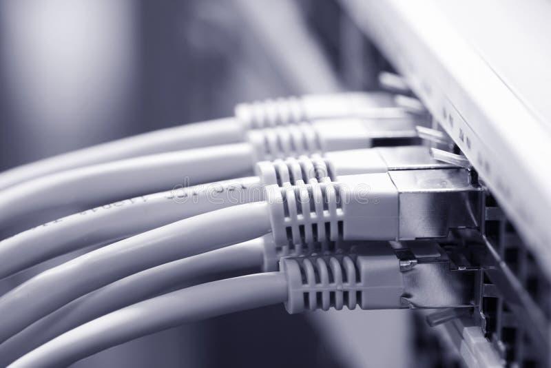 De kabels van het netwerk die met een schakelaar worden verbonden royalty-vrije stock afbeelding