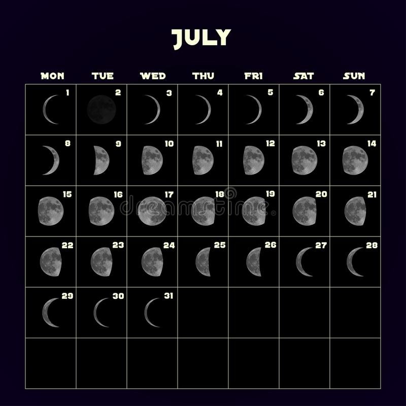 De kalender van maanfasen voor 2019 met realistische maan juli Vector vector illustratie